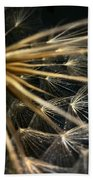 Dandelion Forty Three Bath Towel