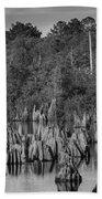 Dead Lakes Cypress Stumps Bw  Bath Towel