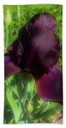 Deep Burgundy Iris Bath Towel