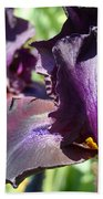 Deep Purple Irises Dark Purple Irises Summer Garden Art Prints Bath Towel