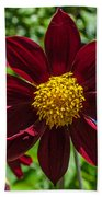 Deep Red And Yellow Flowers Bath Towel