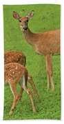 Deer Family Hand Towel