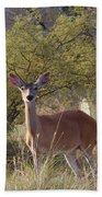 Deer Bath Towel