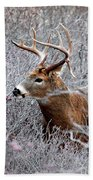 Deer On A Frosty Morning  Hand Towel