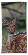 Deer V5 Bath Towel