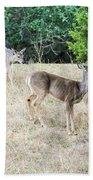 Deer24 Bath Towel