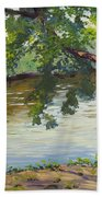 Delaware River At Washington's Crossing Bath Towel