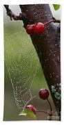 Delicate Spider Weave Bath Towel