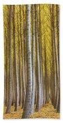 Dense Forest Of Poplar Trees In Boardman Oregon During Fall Bath Towel