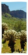 Desert Cholla 2 Bath Towel