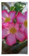 Desert Rose Or Chuanchom Dthb2105 Bath Towel