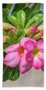 Desert Rose Or Chuanchom Dthb2106 Bath Towel