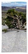 Desert Tree Bath Towel