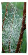 Dew Covered Spider Web Bath Towel