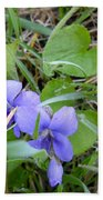Dew Covered Wild Violets Bath Towel