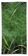 Dew On The Ferns Hand Towel