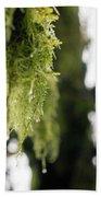 Dewy Moss Hand Towel