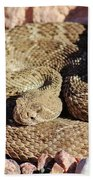 Diamondback Rattlesnake 062414f Bath Towel