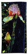 Digital Painting Pink And Yellow Iris 6758 Dp_2 Bath Towel