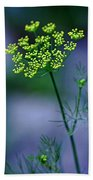Dill Sprig Hand Towel