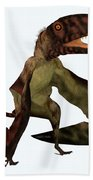 Dimorphodon Pterosaur Bath Towel