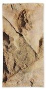 Dino Tracks In The Desert 2 Hand Towel