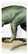 Dinosaur: Allosaurus Bath Towel