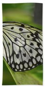 Distinctive Side Profile Of A White Tree Nymph Butterfly Bath Towel