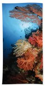 Diver Swims By A Soft Coral Reef Bath Towel