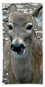 Doe Eyed Deer Talk Bath Towel