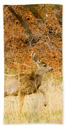 Doe High Stepping On Bald Mountain Bath Towel