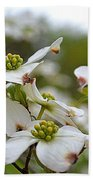 Dogwood Blossoms Bath Towel
