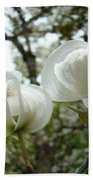 Dogwood Flowers White Dogwood Trees Blossoming 8 Art Prints Baslee Troutman Bath Towel