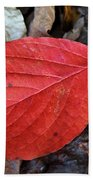 Dogwood Leaf Bath Towel