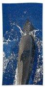 Dolphin Bath Towel