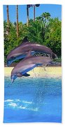 Dolphins Dance Bath Towel