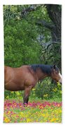 Domestic Horse In Field Of Wildflowers Bath Towel