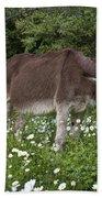 Donkey Grazing In Greece Bath Towel