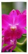 Dendrobium Orchid 2 Bath Towel