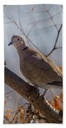Dove On A Branch Bath Towel