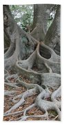 Dragonfeet Bath Towel