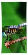 Dragonfly 11 Bath Towel