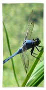 Dragonfly 4 Hand Towel