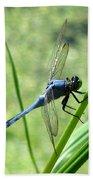 Dragonfly 4 Bath Towel
