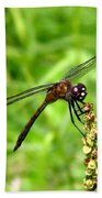 Dragonfly 7 Hand Towel