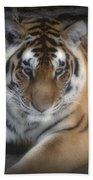 Dreamy Tiger Bath Towel
