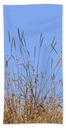 Dried Grass Blue Sky Bath Towel