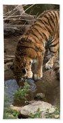 Drinking Tiger Bath Towel
