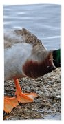 Duck Bath Alantic Beaches Nc Bath Towel