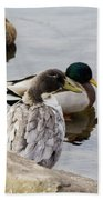 Duck, Duck Bath Towel